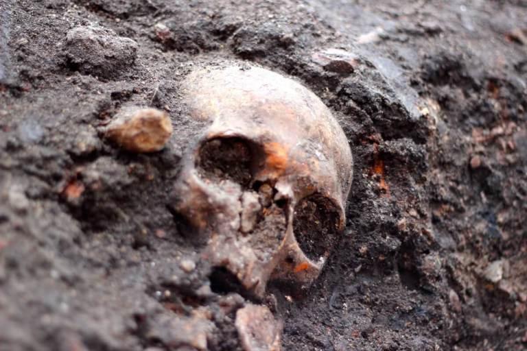 ضحايا الحرب الكيميائية