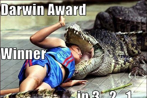 جوائز داروين