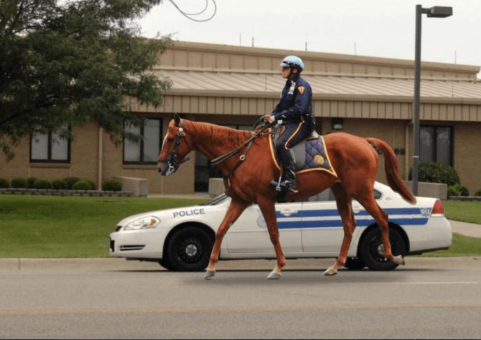 شرطة الخيالة